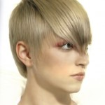Short ash blonde hairstyle.