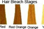 Hair Bleach Stages