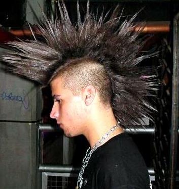 Long Mohawk My New Hair