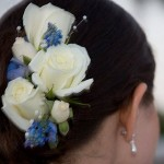 White roses and small blue flowers in bridal hairstyle.